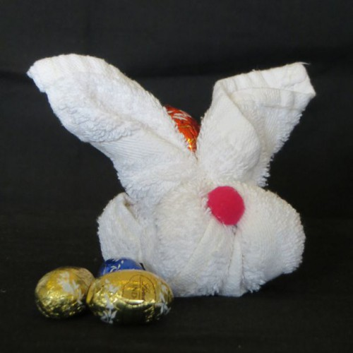 Facecloth bunny
