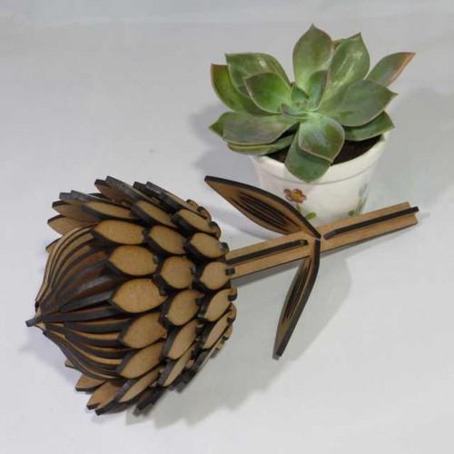 3D Protea