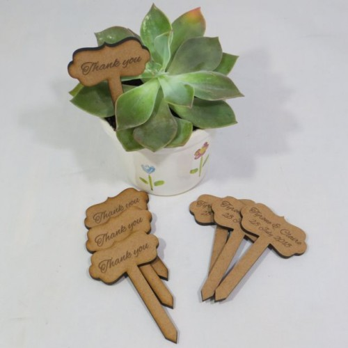 Succulent tags