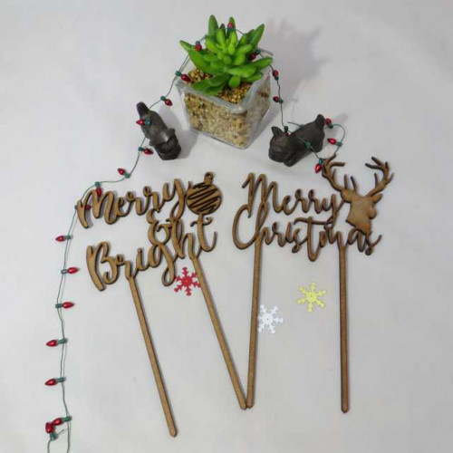 Lg Xams Cake toppers